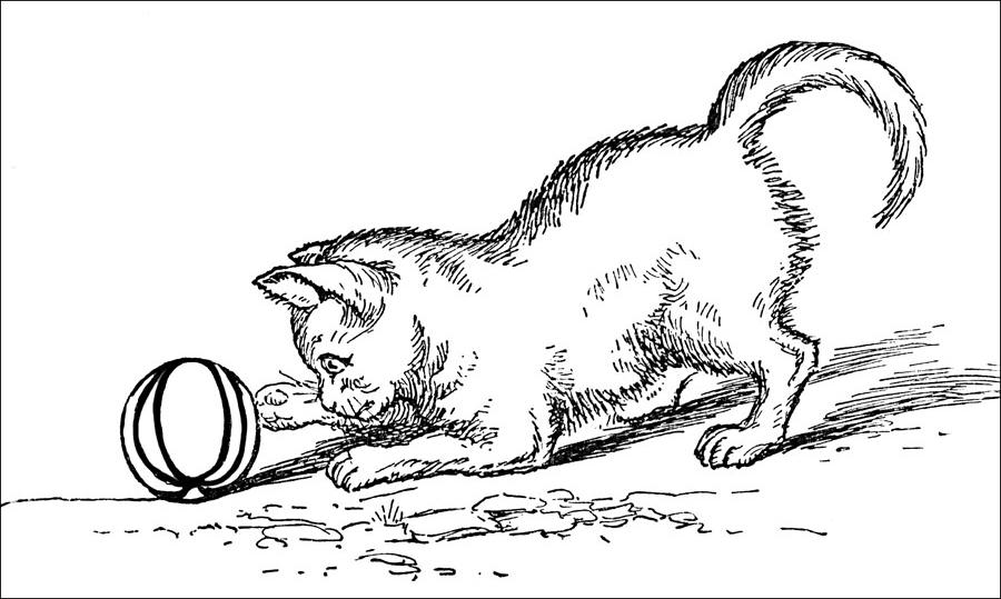 Coloreaza pisica jucausa