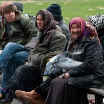 De la 1 ianuarie 2014 romanii si bulgarii vor lucra liber in Europa