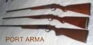Acte necesare permis arma