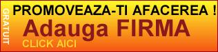 director web gratuit, promovare gratuita online